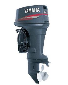 4690609_yamaxa-55_2